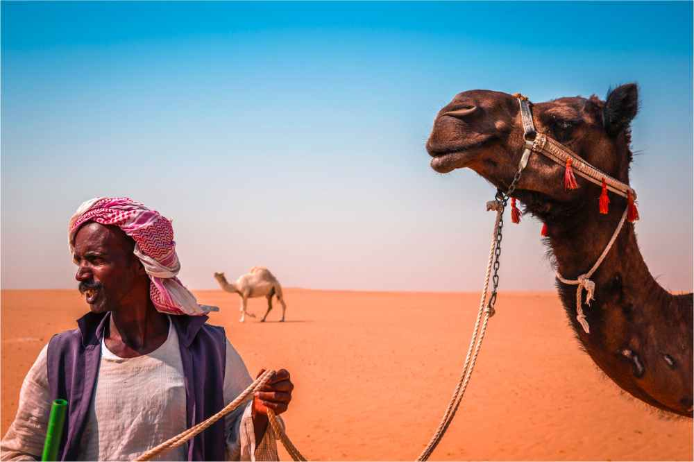 standing man beside camel on desert